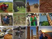 African Mosaic Photos