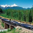 Rocky Mountaineer.ashx