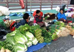 Women at market 250x176 Travel In Search of Locals