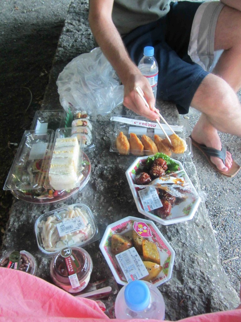 Budget picnic in Kyoto, Japan